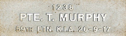Image of plaque on tree S176 for Thomas Murphy